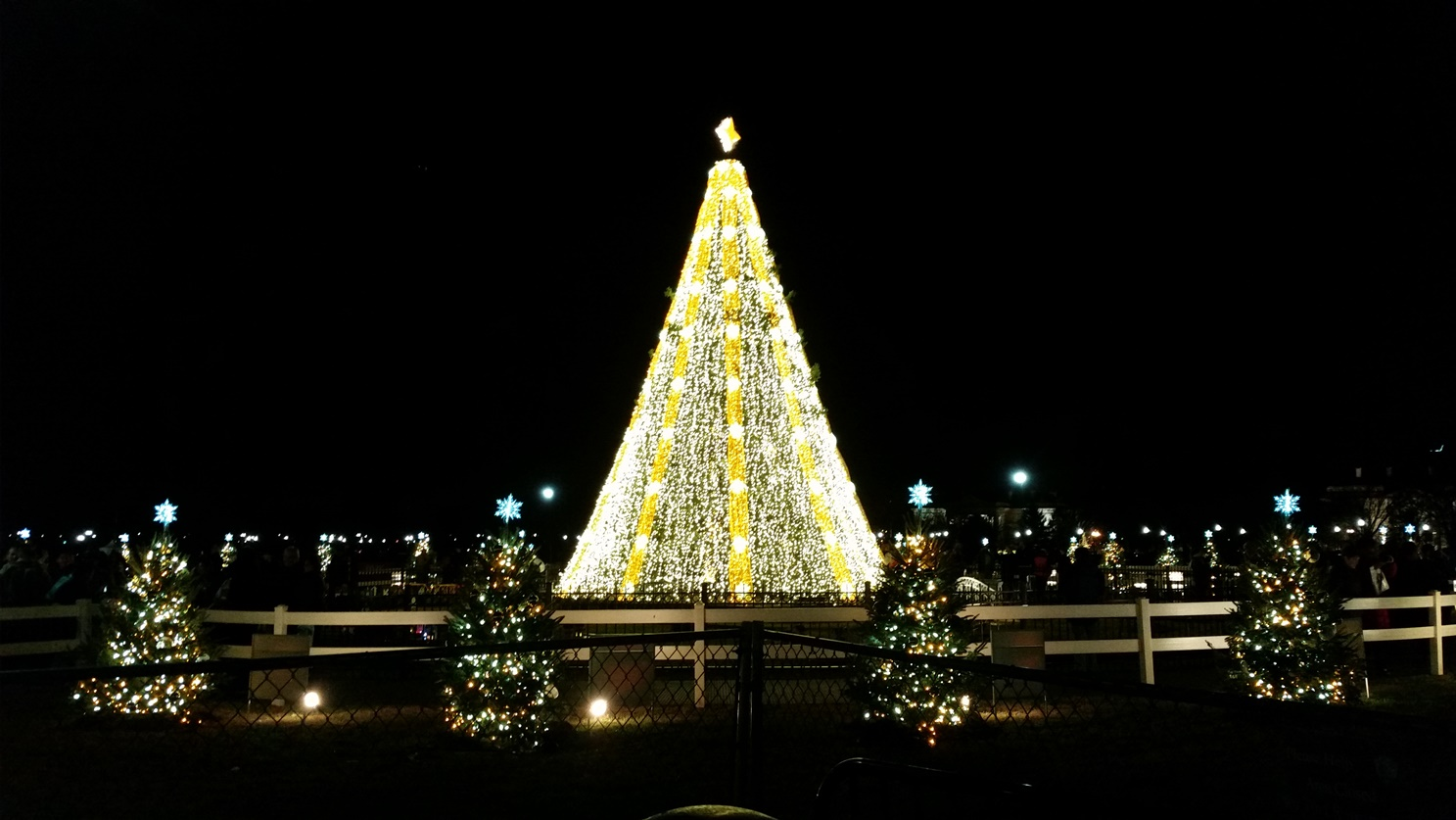 How to Visit the National Christmas Tree Like a Local l ...