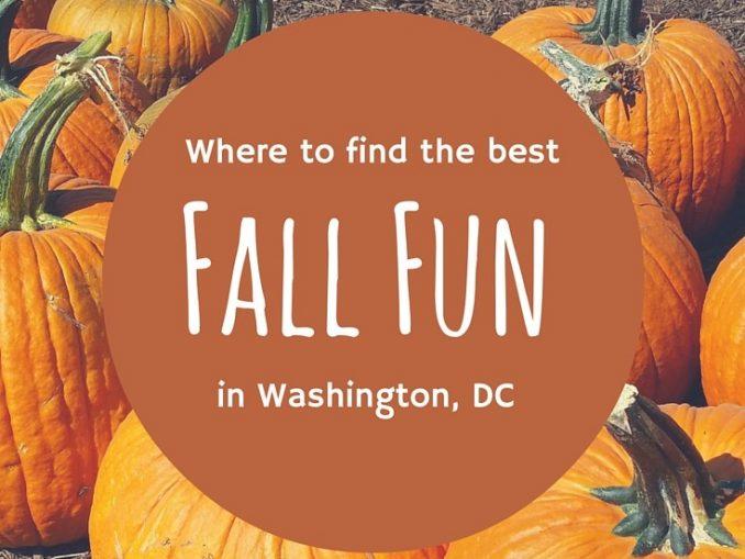 Fall Fun Washington DC