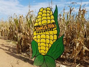 Summer's Farm giant corn maze sign