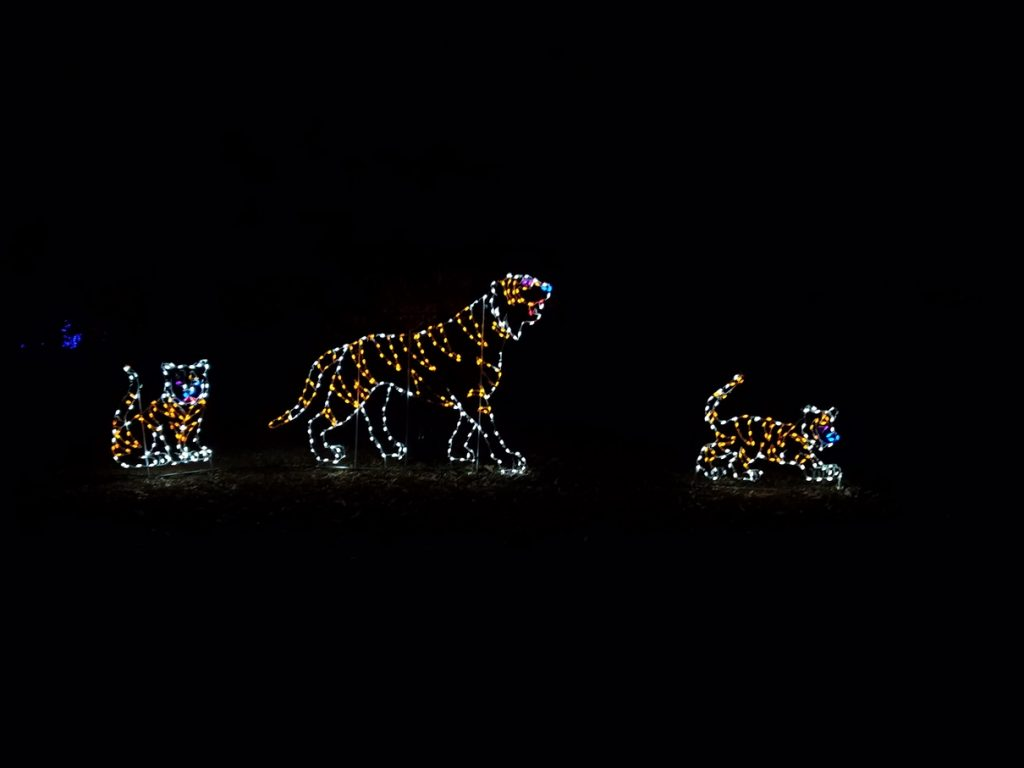 Tigers and two cubs made with lights