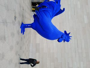 Giant blue rooster