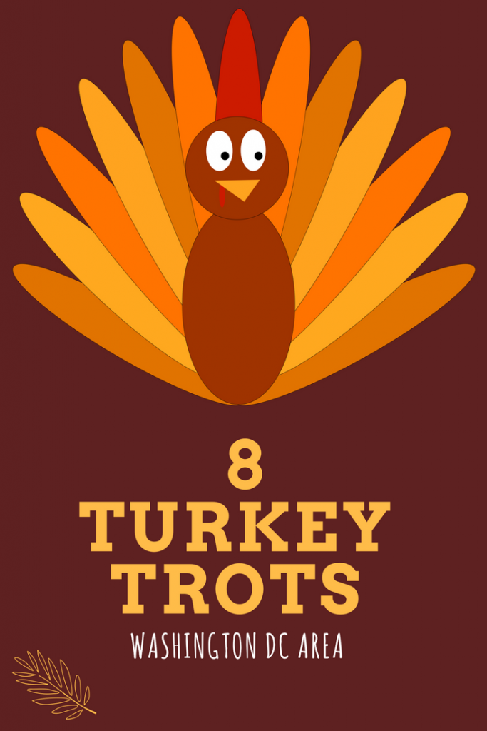 Illustrated turkey banner