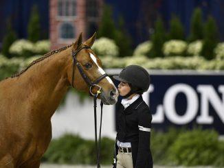 Rider giving brown horse a kiss