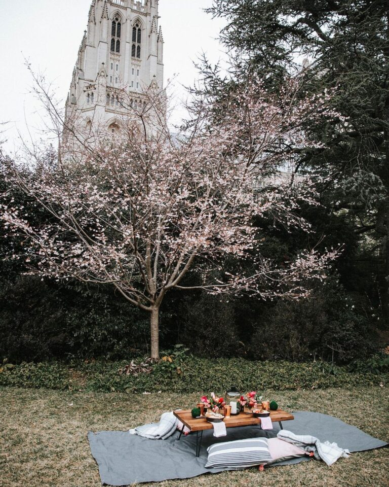 Picnic in front of the National Cathedral
